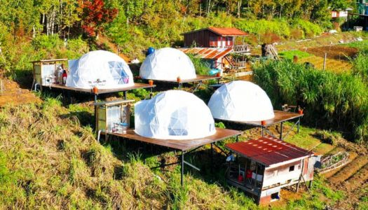 Go glamping in Kundasang (Sabah) in this dreamy bubble hotel above the sea of clouds! – Umea Glam Kundasang